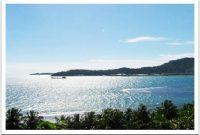 Visitando la isla de Bungus Padang