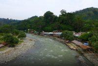 ブキッラワンを訪問オランウータンの聖域