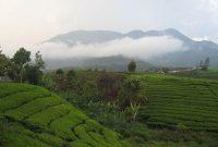 Visiting Mount Talang Solok