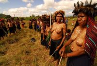 Baliem Valley Festival Baliem, They Hold bows and arrows to hunt the pig