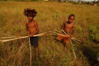 Baliem Valley Festival , The deep-rooted heritage of their ancestors are introduced in the early age. These boys are practicing the safe archery taught by their fathers.