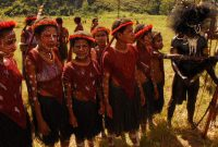 Baliem Valley Festival , The festival is a rare occasion. The local people participate voluntarily in their best looking performance