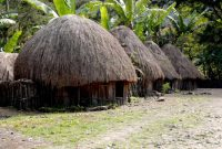 Baliem Valley Men's hut of the Danis is called Honai. Women's hut is called Ebei. Their pigpen is called Wamai. However, they all share a mutual look; the conical roof made of forest straw or reeds.