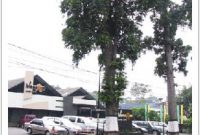 Visitando la ciudad de Bandung con muchas tiendas de fábrica