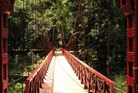 Besuch des Botanischen Gartens von Bogor