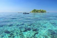 마카 사르 시티 근처 섬에서 상어와 함께 다이빙