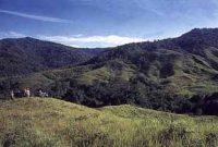Kayan Mentarang National Park 2