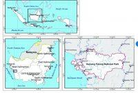 Besuch des Mount Palung Nationalparks, des Lebensraums des Orang-Utans