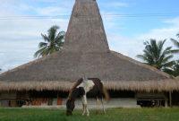 Visitando a vila de Prailiu, Sumba