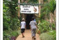 Besuch des Schmutzer Primatenzentrums Ragunan Jakarta