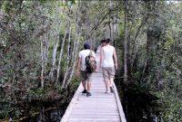 Tanjung Puting National Park 3