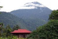 Visitando la reserva natural de Tangkoko