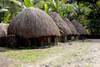 Visiting The Wamena Highlands