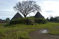 Traditional Village of Compang Ruteng 2