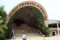 Посещение Центра Приматов Шмутцера Джагарта Рагунан