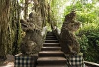 Visiting Ubud Monkey Forest Bali