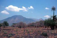Visiting Baluran National Park