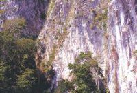 Manusela National Park 2